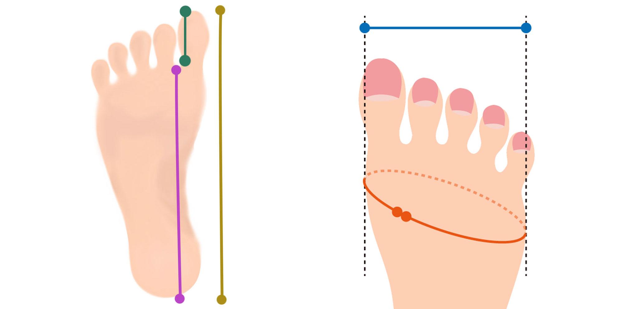 わかりやすい草履のサイズの測り方